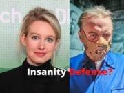 Elizabeth Holmes Insanity