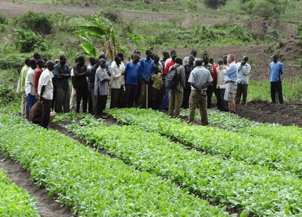 Tribert Ayabatwa Uganda